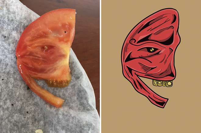 Ví dụ từ một lát cà chua bình thường nhưng những người mắc hội chứng Pareidolia lại nhìn thấy được một khuôn mặt