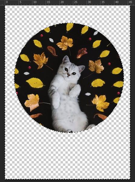 cắt hình tròn trong photoshop