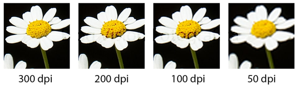 Vai-tro-cua-resolution-trong-photoshop-quan-trong-the-nao