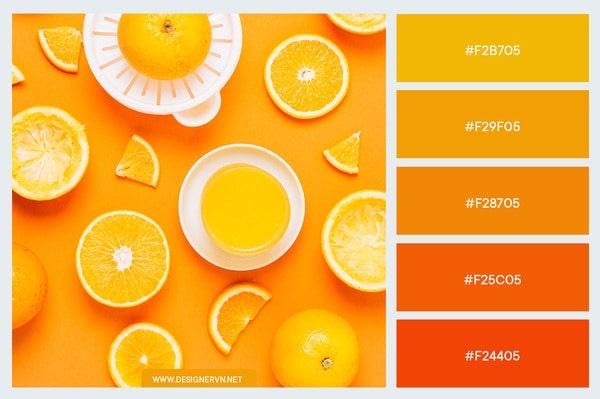 Những gam màu vàng cam được yêu thích nhất khi phối màu trong thiết kế