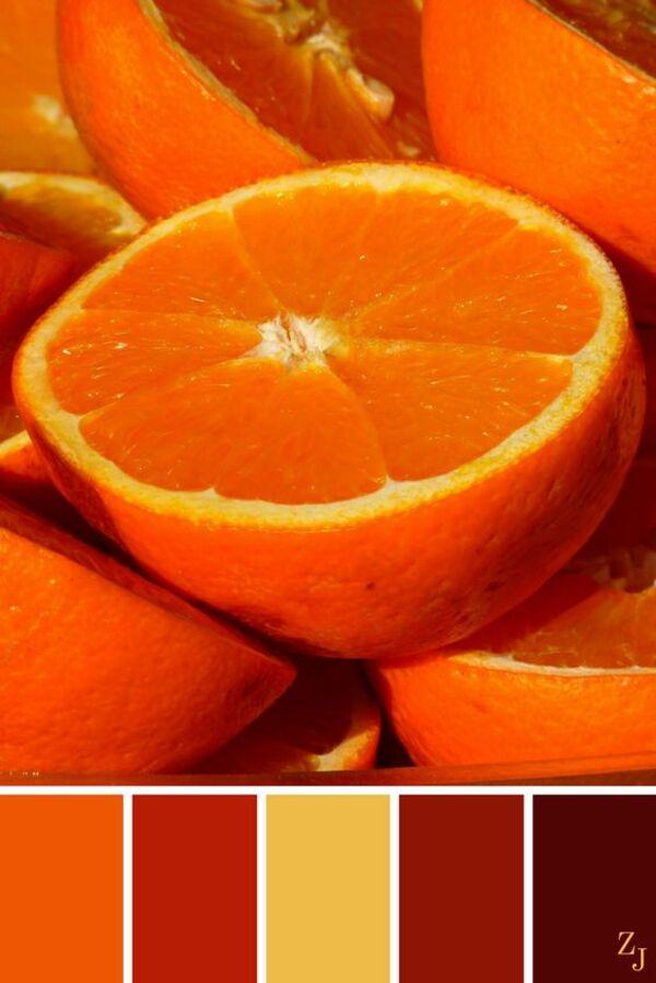 Khám phá ý nghĩa của màu vàng cam